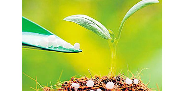 Estrategias exitosas para fertilizar en soja